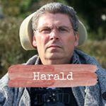 Sterbe Human Sterbehilfe Harald Mayer